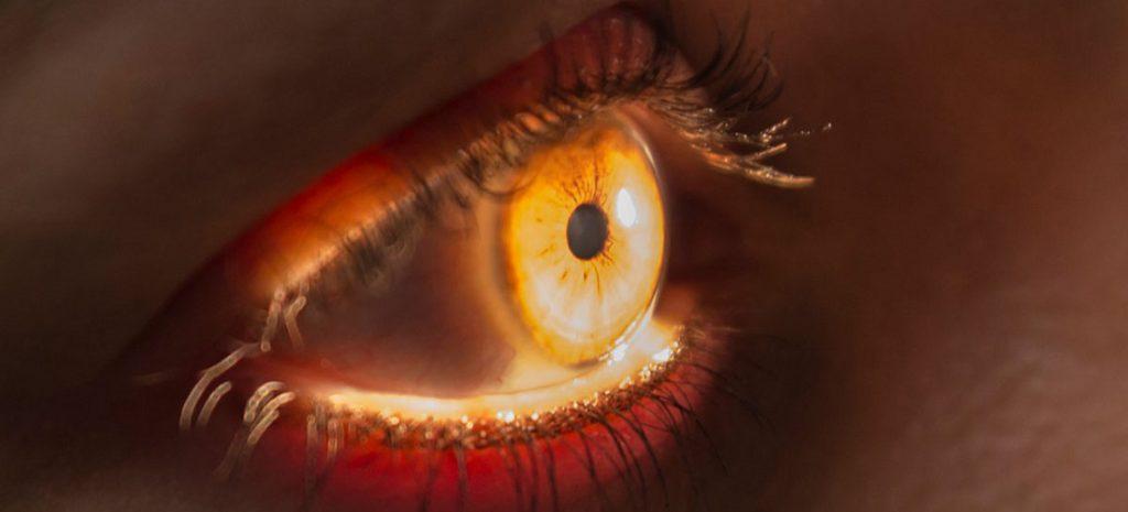 Augen-Vorsorge/- screening